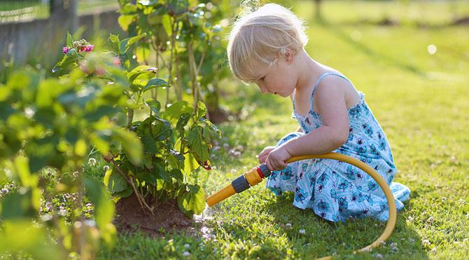 Bahçe Sulama İpuçları